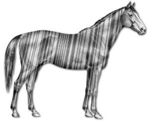 Konsequenzen der bereits bestehenden und noch geplanten Anwendungsverbote in der Pferdepraxis